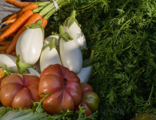 Llegums, verdures i hortalisses i derivats